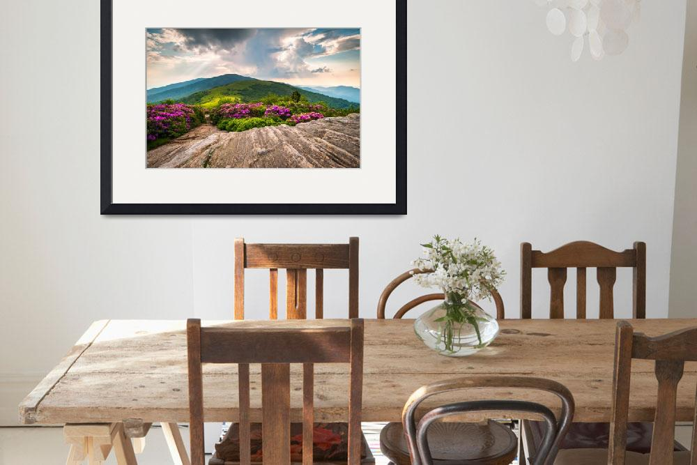"""""""Jane Bald in Bloom - Roan Mountain Highlands Lands&quot  (2011) by DAPhoto"""