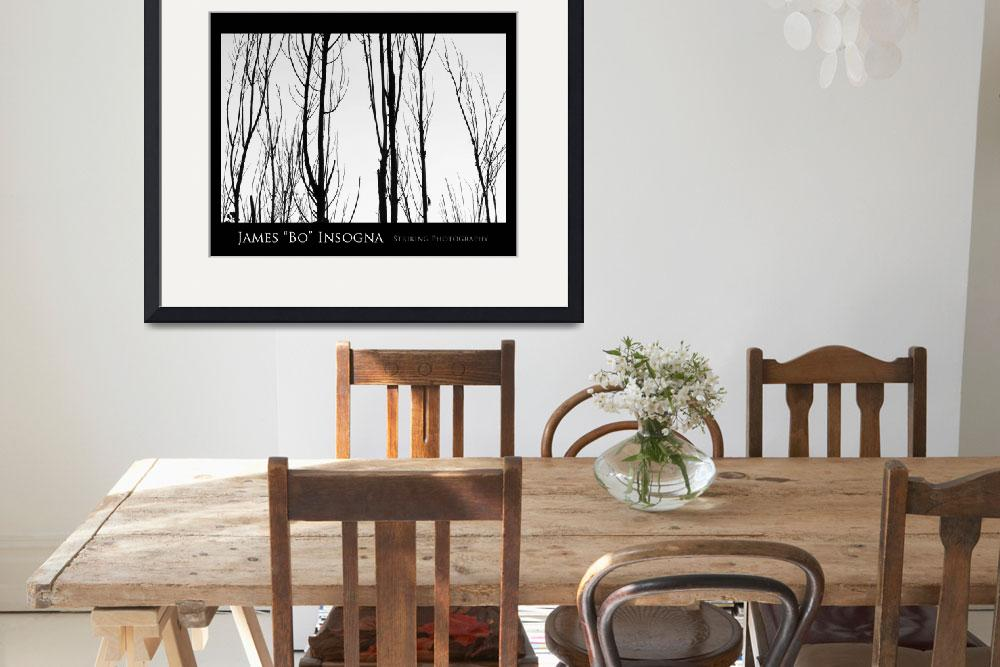 """""""Tree Branches Black and White  Abstract Poster&quot  (2010) by lightningman"""