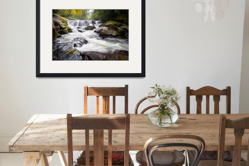 """""""Chattooga Potholes - Chattooga River, Highlands, N&quot  (2011) by DAPhoto"""