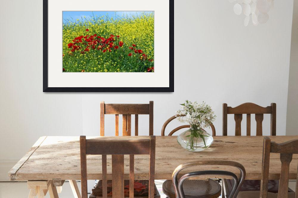 """""""Poppies&quot  (2008) by leicafan"""