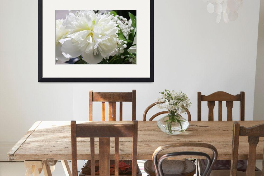 """""""White Peony Flower&quot  by Aneri"""