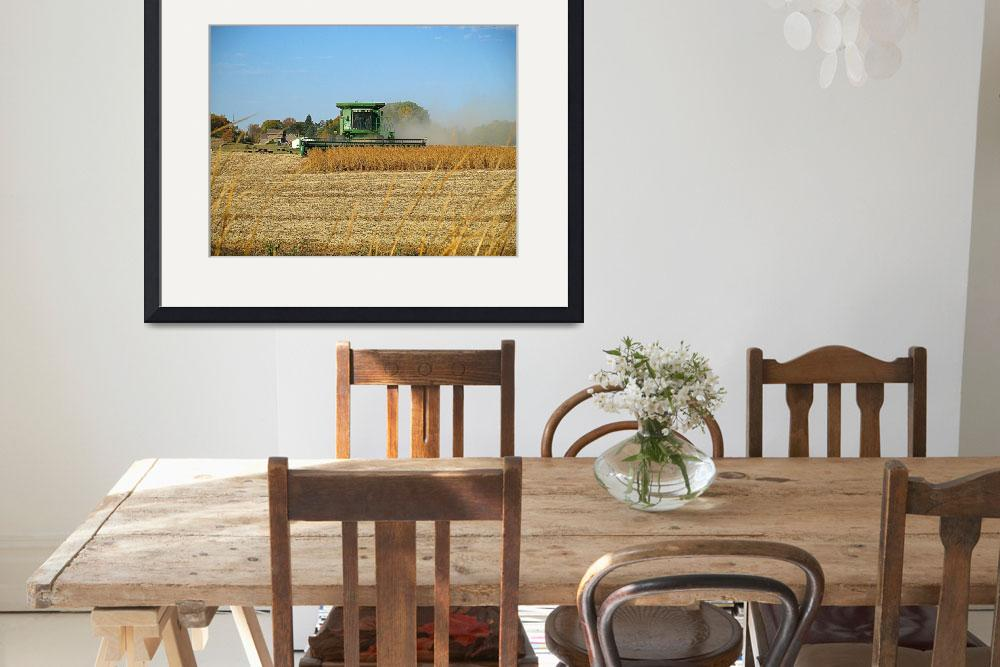"""""""Soy Bean Harvest&quot  (2011) by DryFlyPhotograhy"""