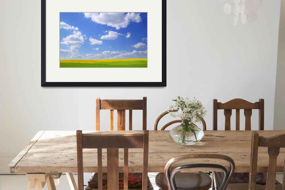 """""""Scenic View Of Meadow And Canola Crop&quot  by DesignPics"""