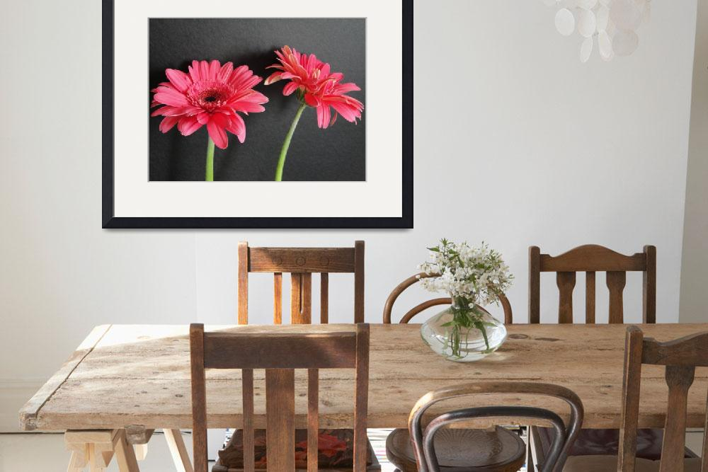"""Pink Gerbera Daisies&quot  (2009) by MzEmCab"