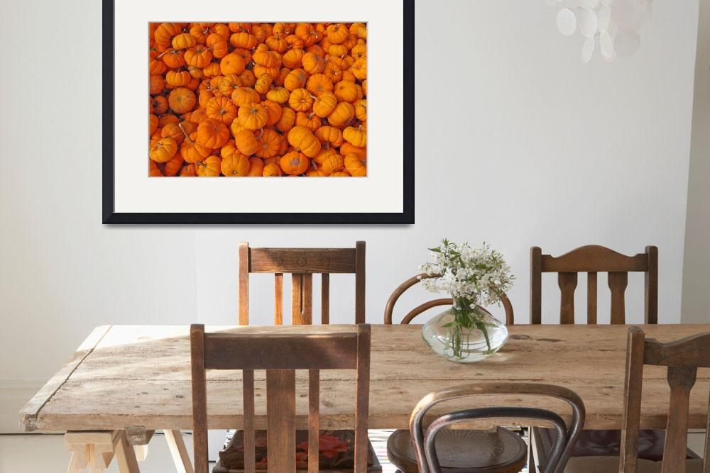 """""""Baby Pumpkins&quot  (2007) by daisyjoan"""