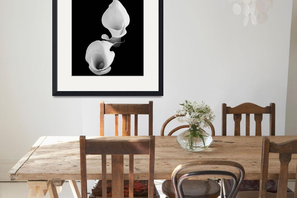 """""""Calla Lily twins (b&w)&quot  by RobTerwilliger"""