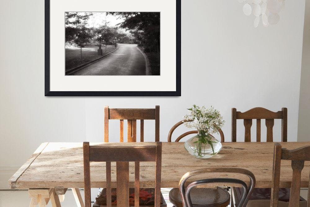 """""""Bowral Driveway""""  (2012) by CorinneDany"""