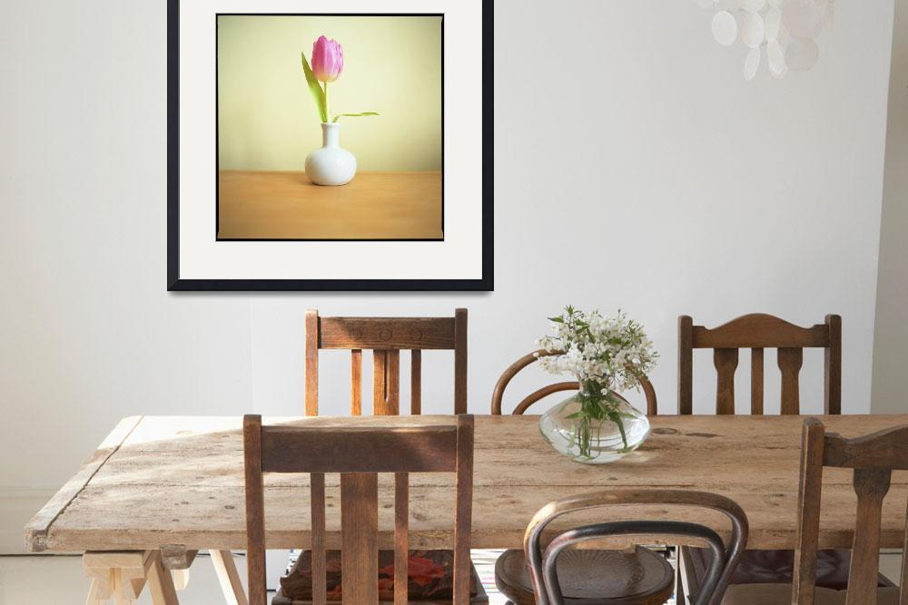 """""""Tulip""""  (2010) by anselolson"""