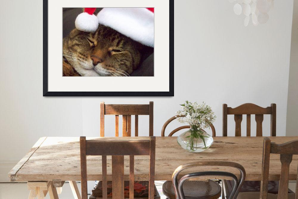 """""""Christmas Kitty smiles&quot  by iona847"""
