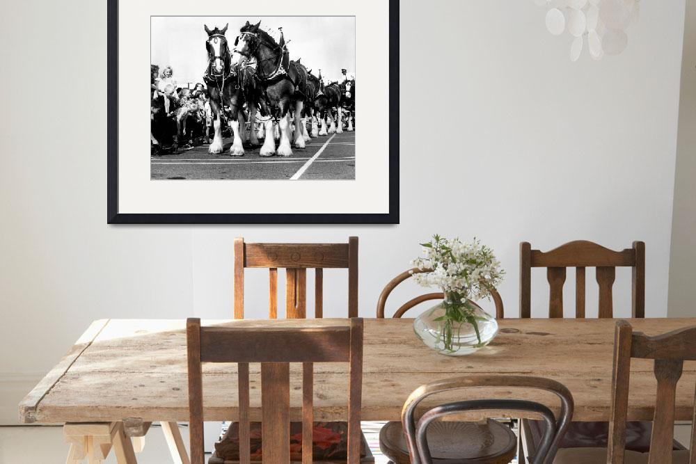 """Clydesdale Horses Vintage""  by RetroImagesArchive"