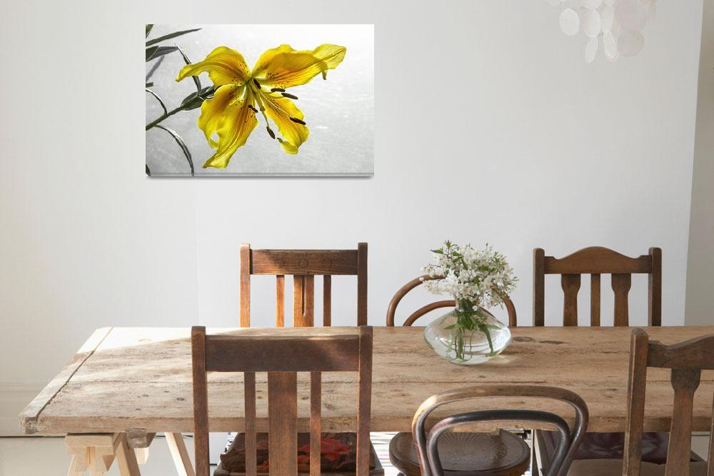 """""""The Yellow Lily&quot  (2014) by mgarrido"""