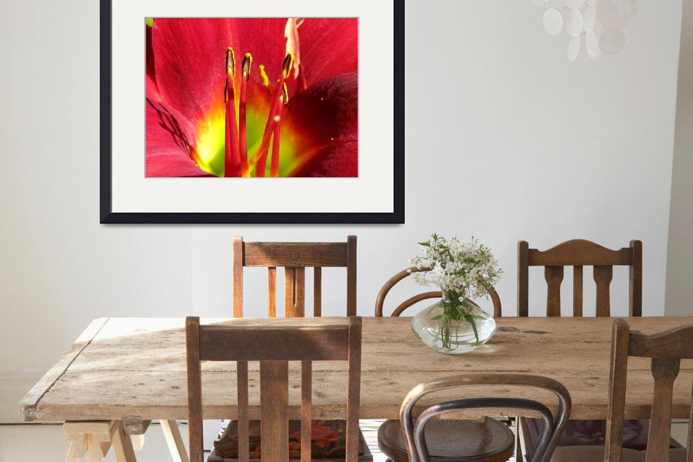 """""""Red Lily""""  (2008) by snapdragon76"""