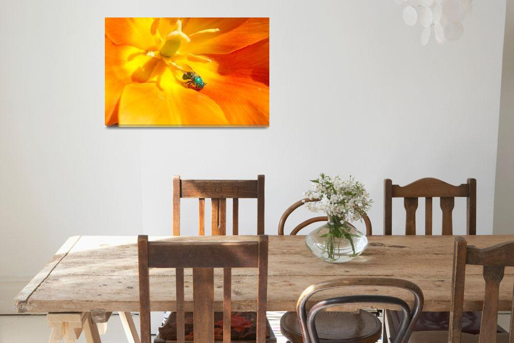 """animal wasp tulip flower""  by BrianDunne"