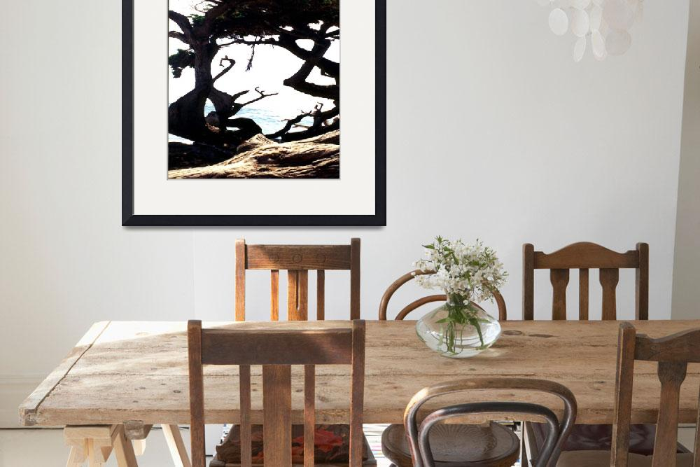 """""""Abstract Tree At Monterey&quot  by memoriesoflove"""