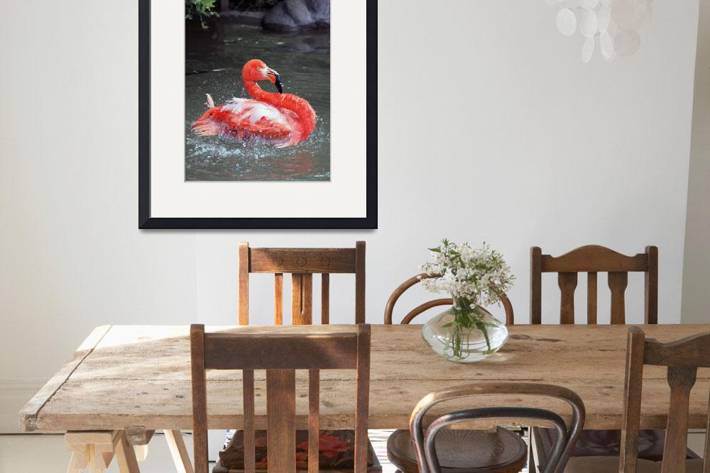 """Flamingo in the Water&quot  (2010) by bjimages"