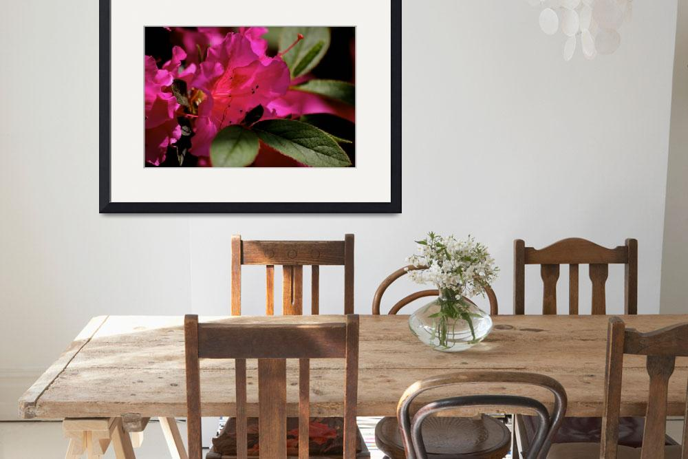 """""""Rhodendendron flower&quot  (2008) by libbytelford"""