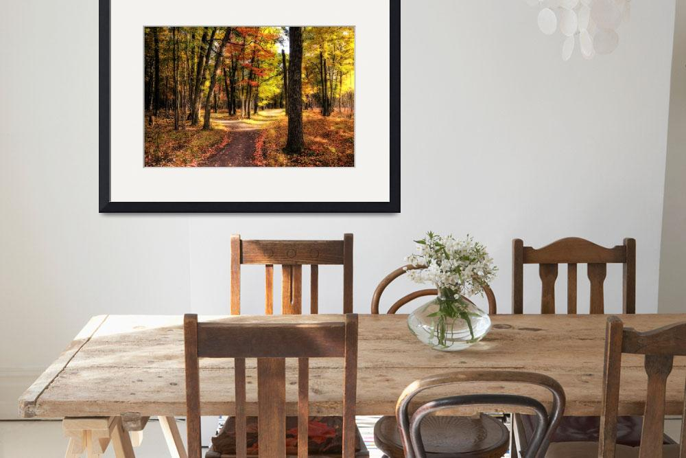 """""""Footpath in Autumn&quot  (2009) by sterk"""