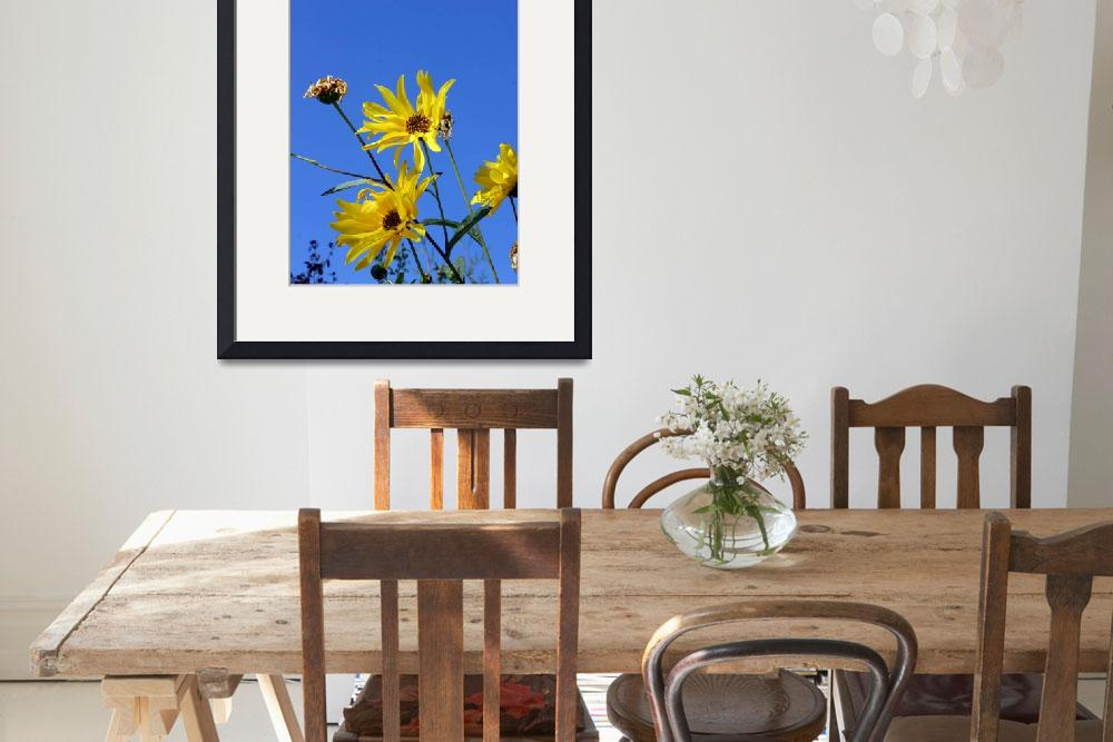 """""""Yellow flowers in the sun&quot  by fejesb"""