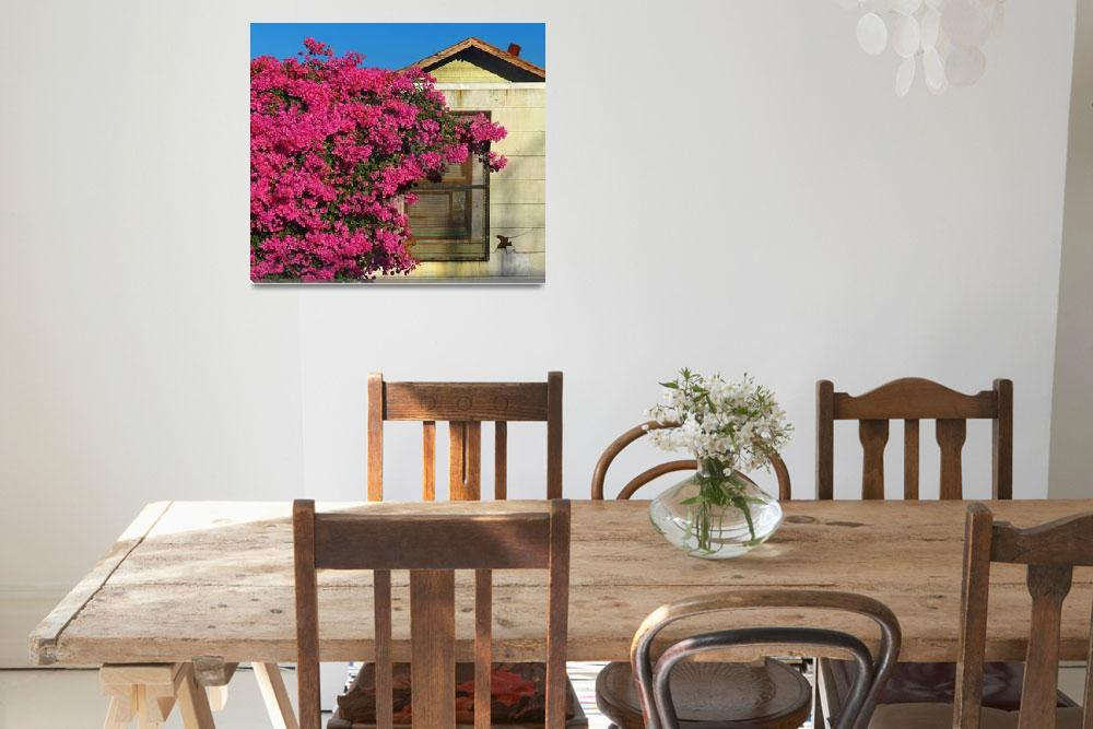 """House and Bougainvillea&quot  (2012) by swazoo"