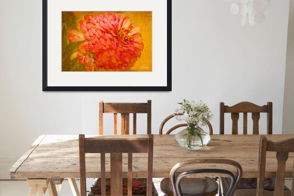 """""""Zinnia Flower Picture&quot  (2013) by PhotographsByCarolFAustin"""