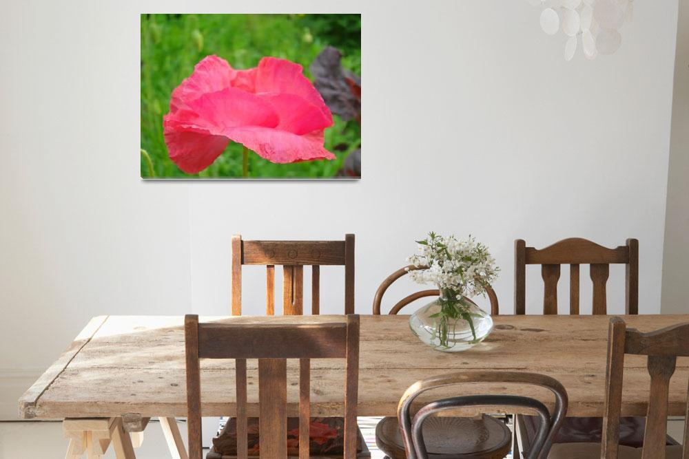 """Floral Art Print Pink Poppy Flower Baslee Troutman""  (2010) by BasleeTroutman"
