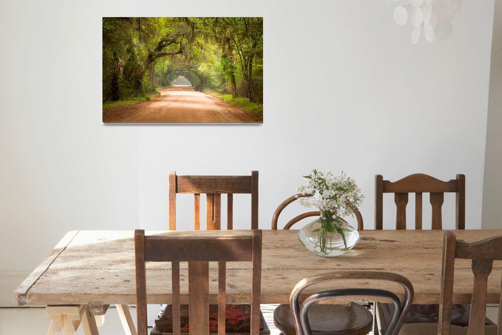 """Charleston SC Edisto Island Dirt Road - The Deep S&quot  (2012) by DAPhoto"