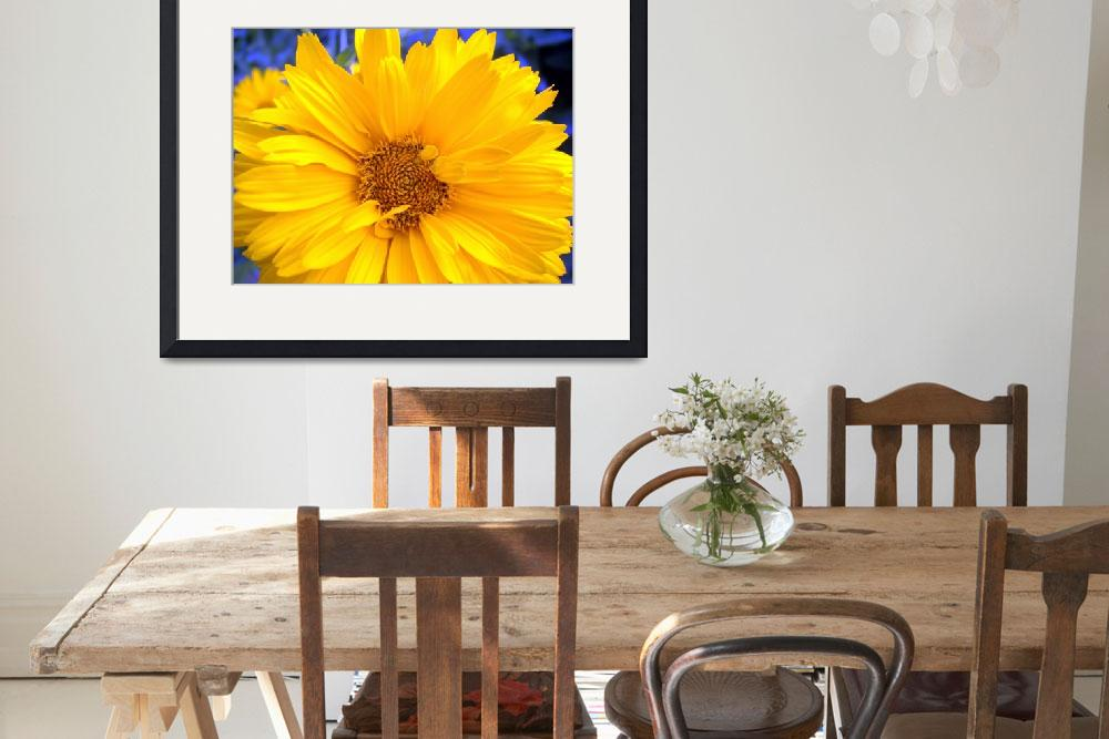"""""""Yellow Daisey&quot  (2009) by bmooreginal"""