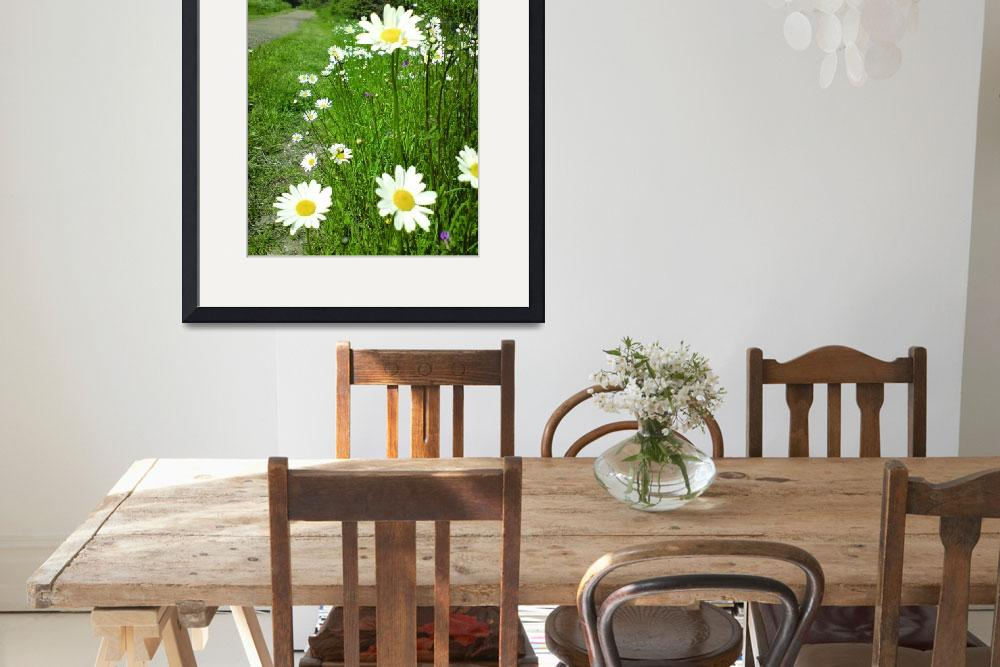 """daisies in perspective""  (2008) by clairebrocklesby"