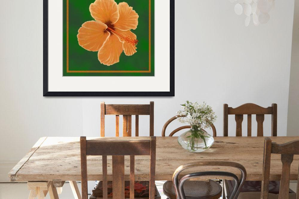 """""""Orange Hibiscus""""  (2008) by TimStringer"""