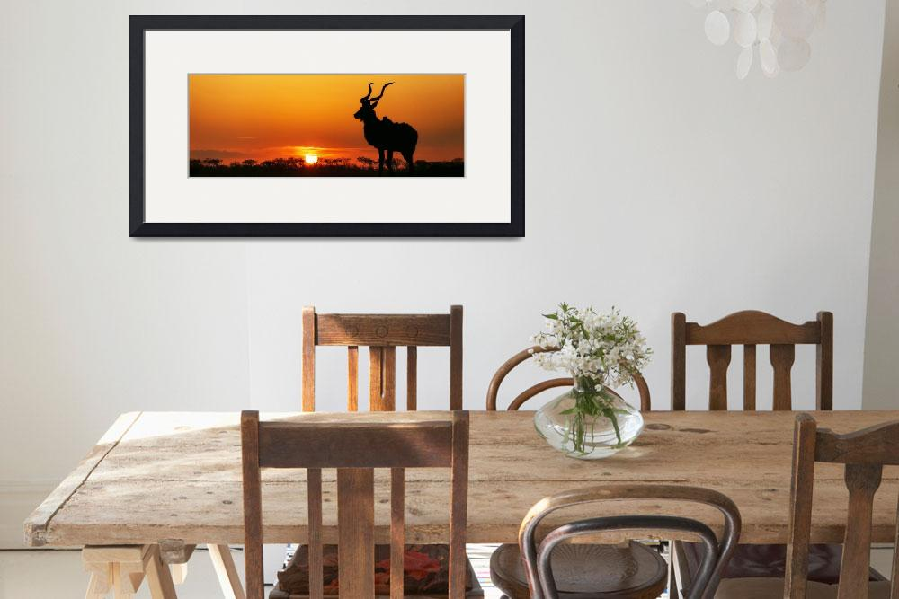"""""""South Africa Sunset Kudu Silhouette&quot  (2016) by ADogsLifePhoto"""