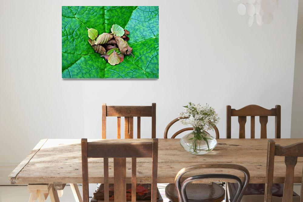 """""""Still Life With Leaves""""  (2010) by paulcausie"""