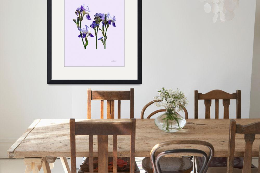 """Group of Purple Irises&quot  by susansartgallery"