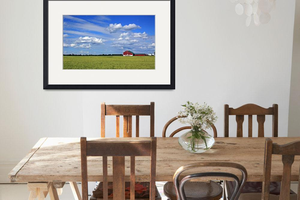 """""""Harvest Field""""  (2009) by CampCrazyPhotography"""
