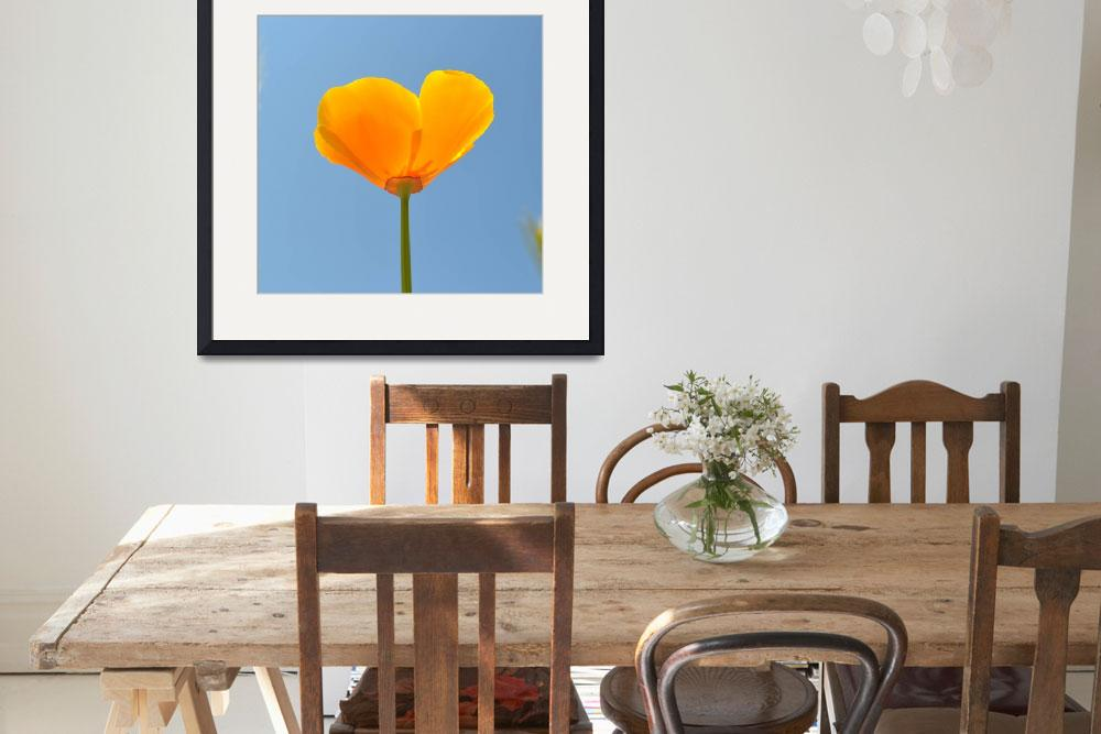 """""""Poppy in the Sky&quot  (2011) by PatriciaSanders"""