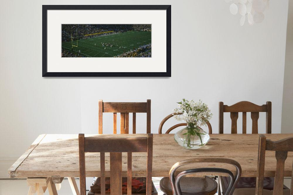 """Spectators watching a football match&quot  by Panoramic_Images"