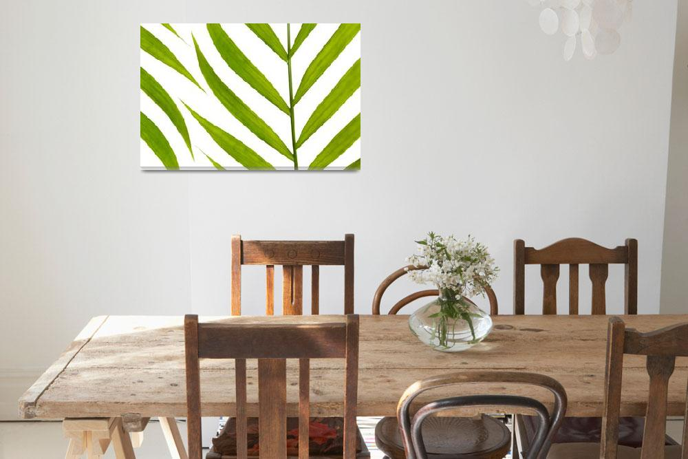 """Contemporary Leaf Design - Natalie Kinnear Photogr&quot  (2014) by NatalieKinnear"