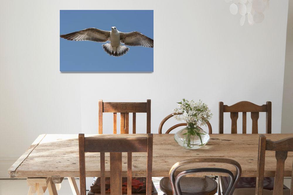 """Bird in Flight""  (2009) by bb786"