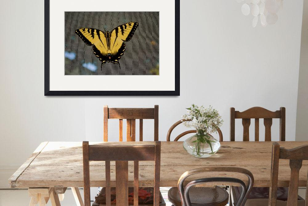 """Eastern tiger swallowtail butterfly&quot  (2011) by DearbornDesign"