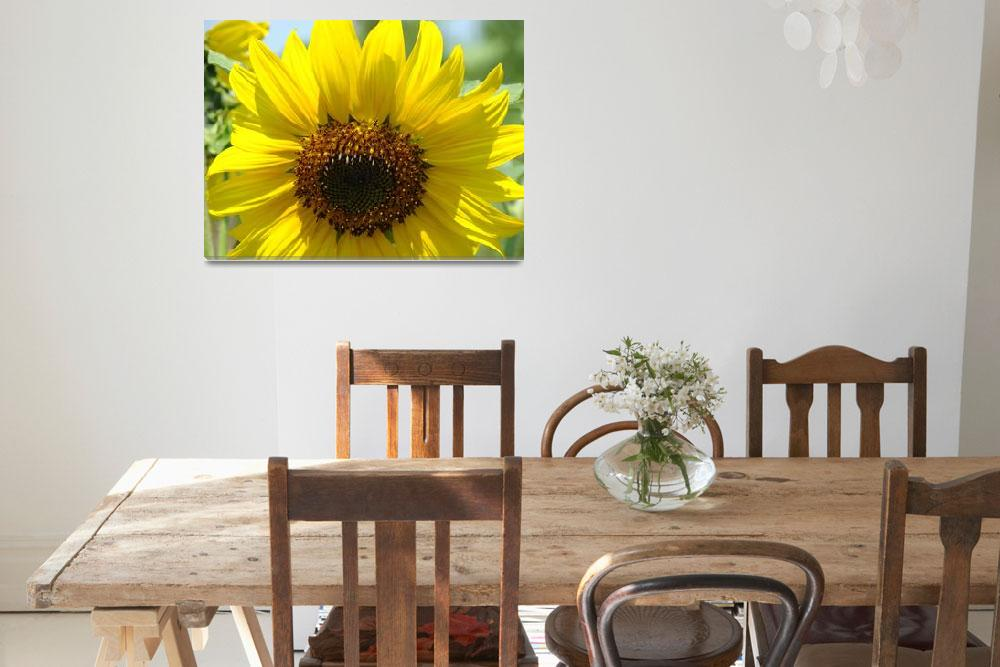 """Christmas Gift Gallery Sun Flower Art Gifts""  (2009) by BasleeTroutman"