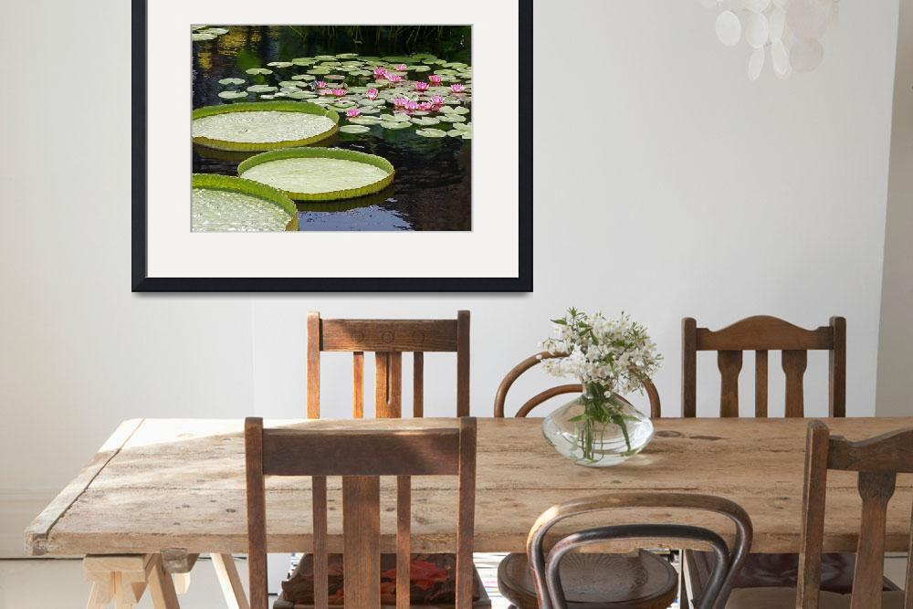"""""""Water Platters and Lilies""""  (2008) by LightHeart"""