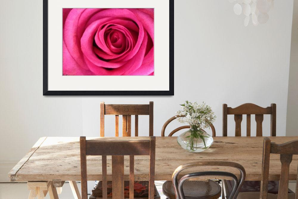"""""""Pink Rose&quot  by psovart"""