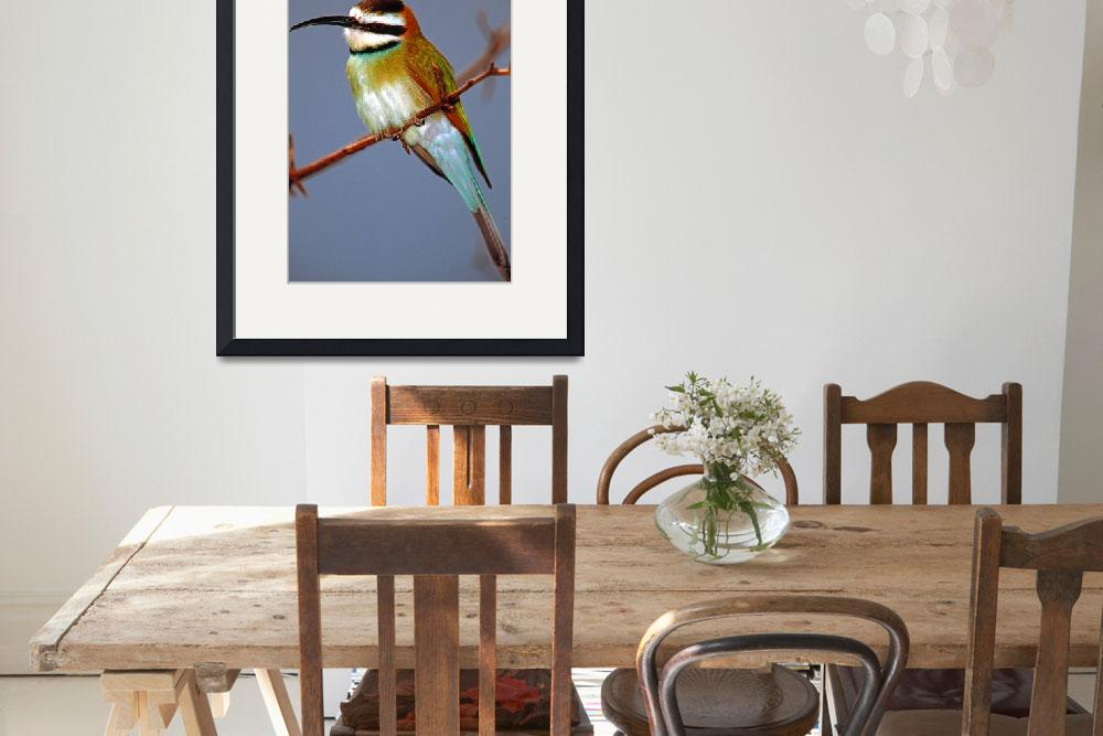"""""""Green African Bee Eater Bird&quot  (2006) by frankreggio"""