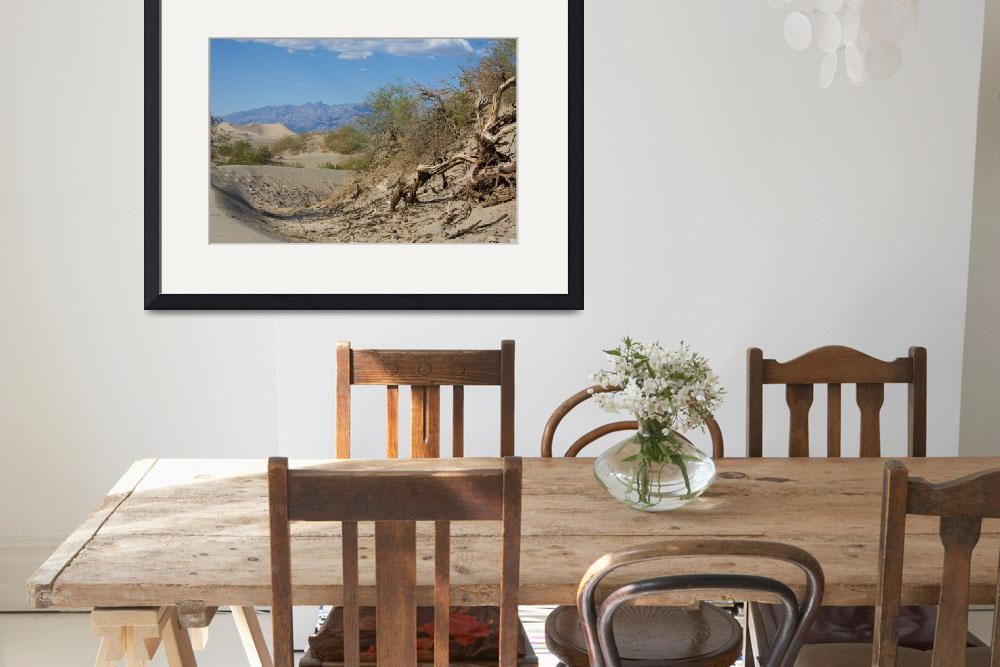 """""""Dried and shrivelled branches in Death Valley, Cal&quot  (2009) by SueLeonard"""