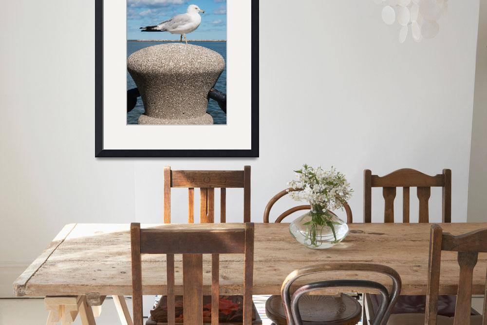 """""""Seagull On A Post&quot  (2012) by StonePhotos"""