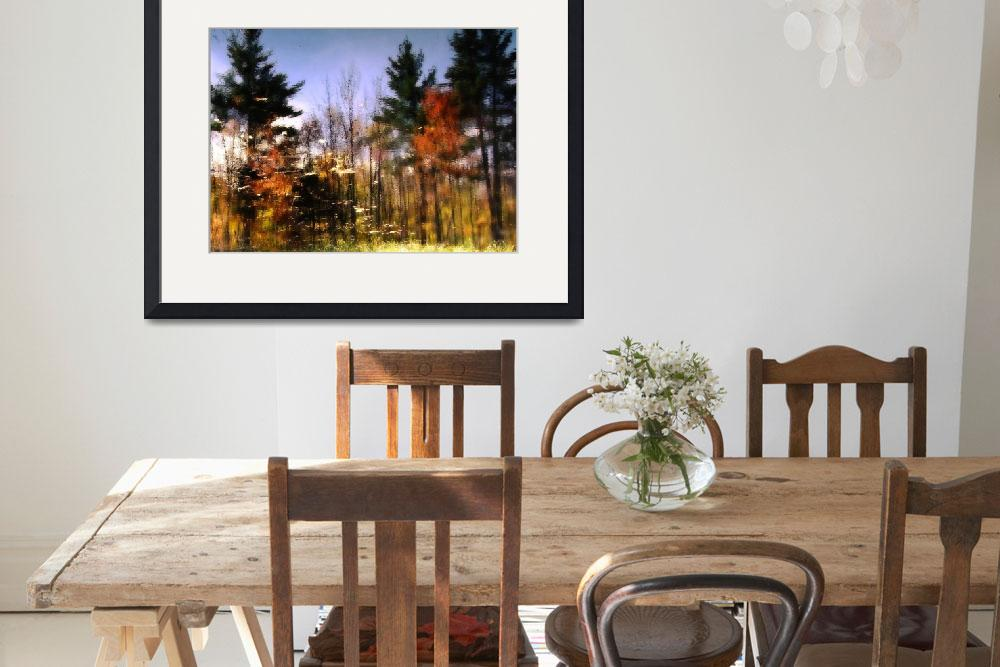 """Abstract Fall Scene In New Hampshire&quot  (2010) by bavosiphotoart"