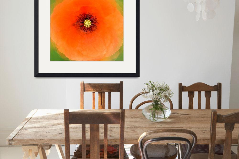 """""""Red Poppy&quot  (2017) by maxblack"""