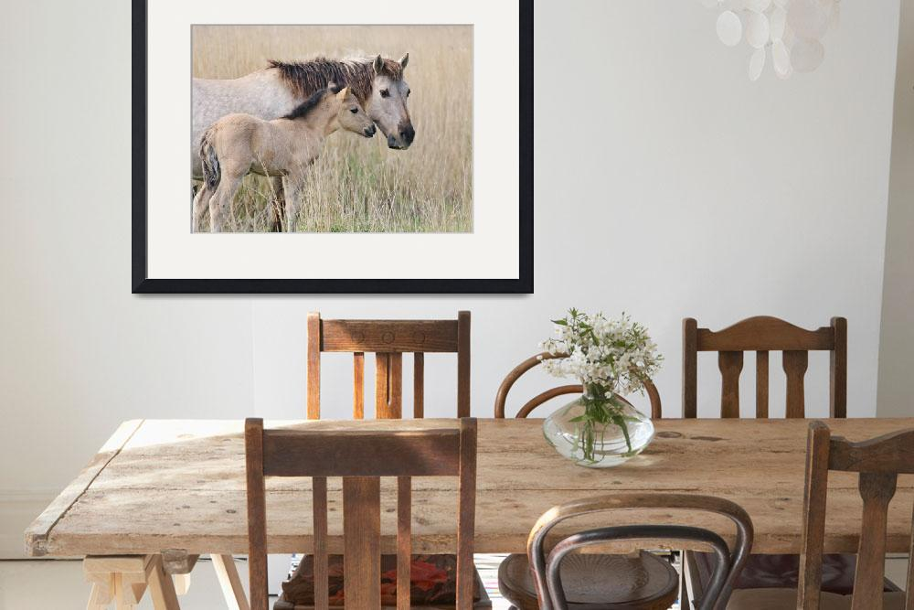 """Konik horse mother and foal&quot  (2014) by Funcards"