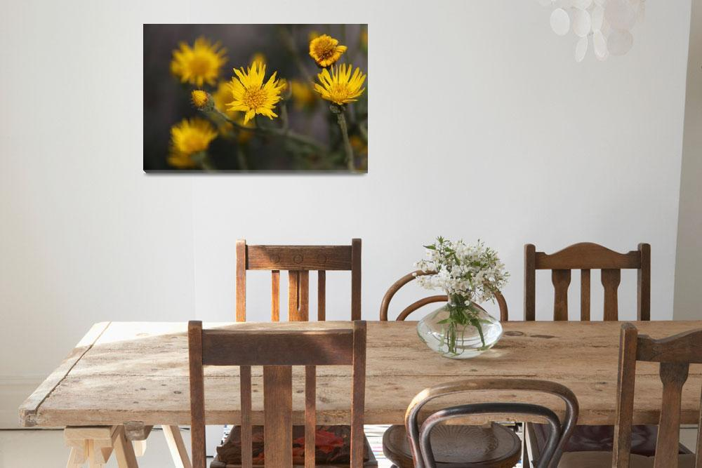 """""""Yellow Wild Flowers""""  by DonBakerPhotography"""