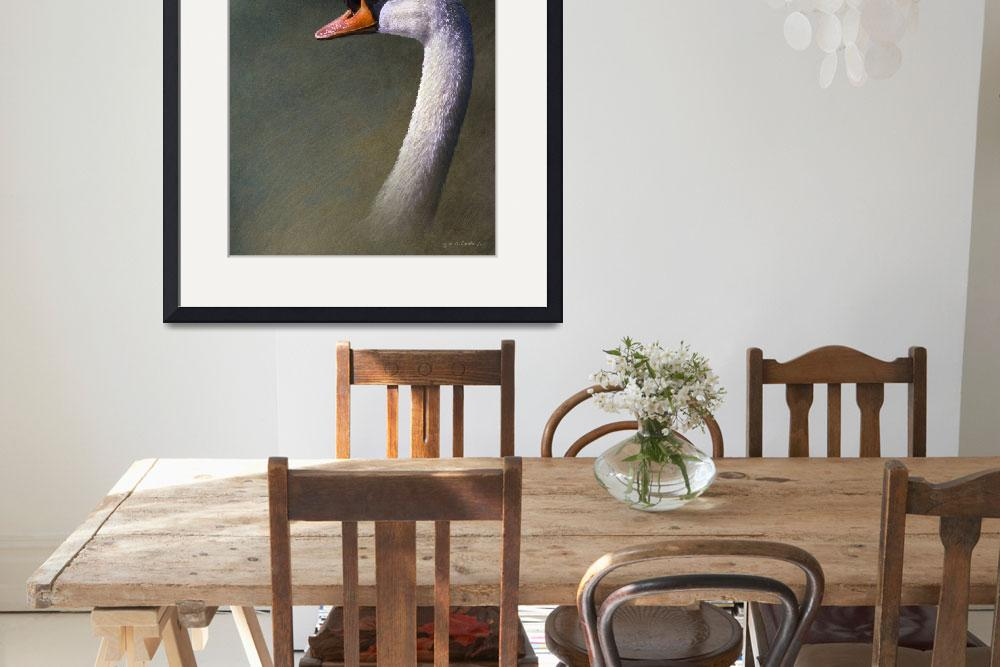 """""""portrait of a mute swan""""  (2010) by rchristophervest"""