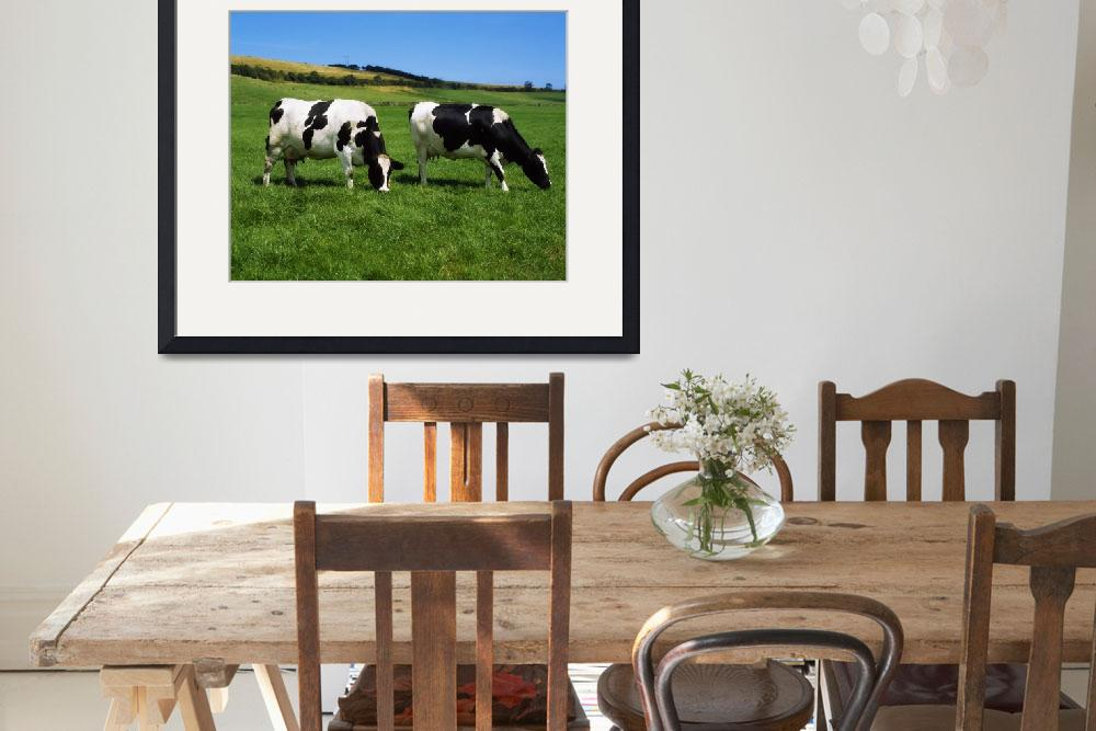 """Dairy Cattle, County Cork, Ireland&quot  by DesignPics"